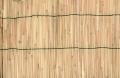 Zástěna bambus 1x3m VERDEMAX 6700