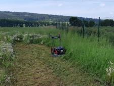 PUBERT FIRST 55P - pojezdová sekačka na vysokou trávu
